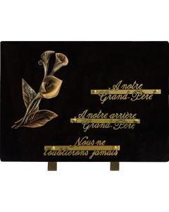 Plaque bronze arum