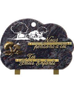 Plaque bronze champignon et gravure ferme 17x25cm