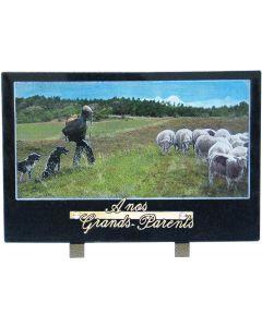 Plaque décor berger et mouton couleur 20x30cm