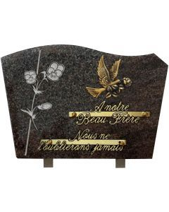 Plaque forme bronze colombe