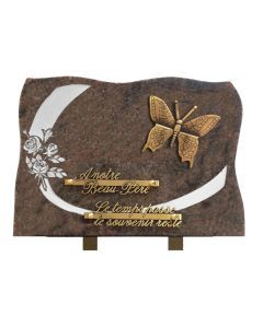 Plaque forme bronze papillon