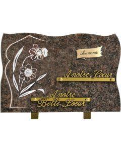 Plaque forme bronze souvenir