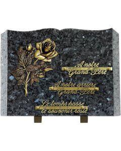 Plaque livre bronze rose