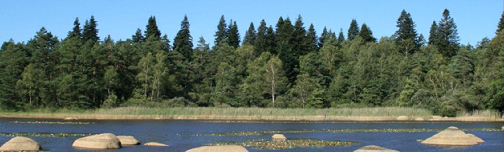 Lac du Sidobre - Terroir d'origine des granits France Tombale